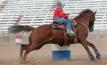 Painted Pony Rodeo - Great Family Entertainment in the Lake George Region