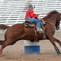 Painted Pony Rodeo - Family entertainment in the Lake George Region